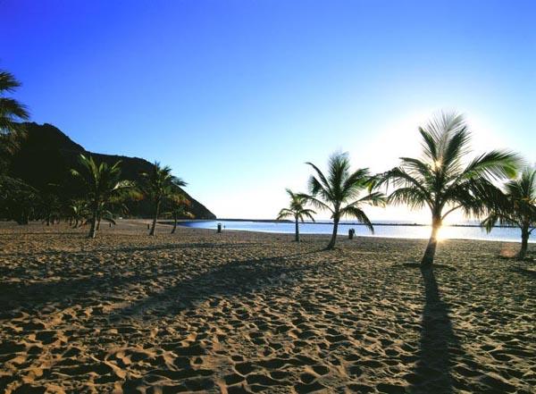 канарские острова климат
